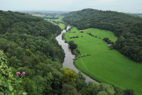 Looking North from Symonds Yat Rock