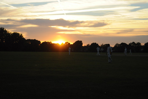 Sunset cricket in Perivale
