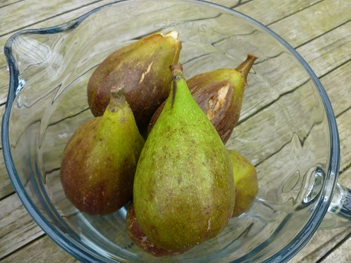 Figs- any recipe ideas?
