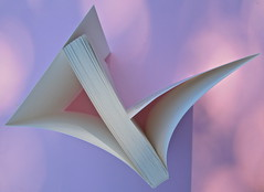 Si sente la voce. 8x8 / Oblique Studio. Carta Canta 2012. Taglio superiore (part.), 1