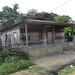 Aveiro, Pará - Brasil             DSC00592