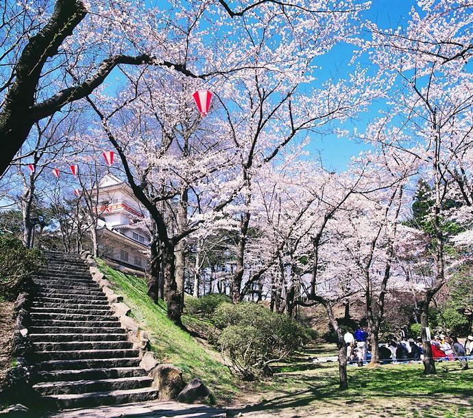 51 千秋公園照片