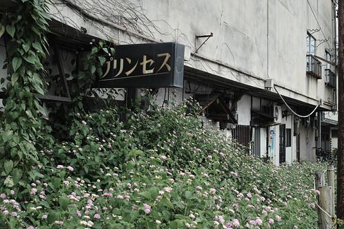 2012.09.19(SDIM2242