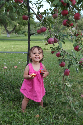 Standing baby picking apples 3