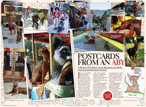 Postcards from an Aby - Your Cat Magazine, Oct. 2012