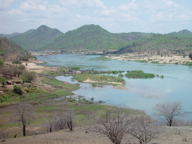 a survey of the zambezi valley Awf conservation in practice papers baseline fish biodiversity surveys –  experiences from the zambezi river, southern africa jimmiel mandima and  henry.
