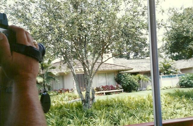 Disney 39 S Mgm Studios Golden Girls House On Mgm Studios