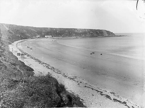 Cows on the beach, Nefyn (1896)