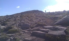 Cairngorm Plateau 2012 by uplandaccess