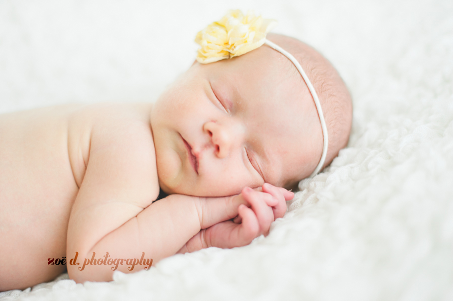 dallas newborn photographer photos of baby on white blanket with yellow flower headband