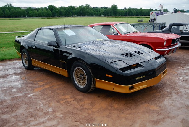 What year did the trans am come out-6981