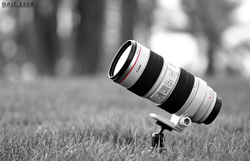 My Lens : Canon EF 70-200mm f/2.8 (L) IS USM