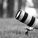 My Lens : Canon EF 70-200mm f/2.8 (L) IS USM by Naif AL-Essa