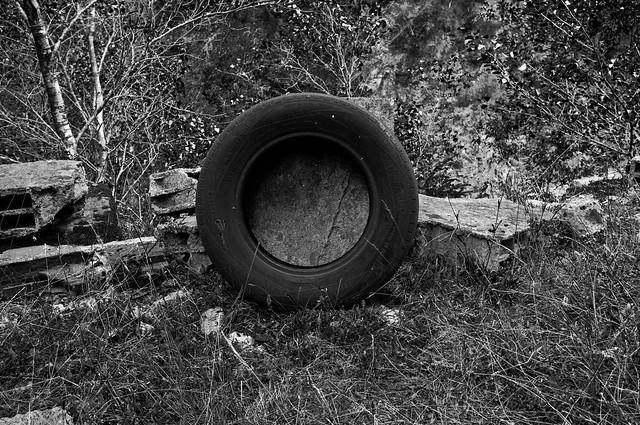 photossafari [minas goizueta]_005