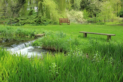Green	Parents Room photo – Gooderstone Water Gardens 11-05-2012 – Green	Parents Room images