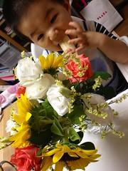 お花とバナナととらちゃん (2012/8/23)