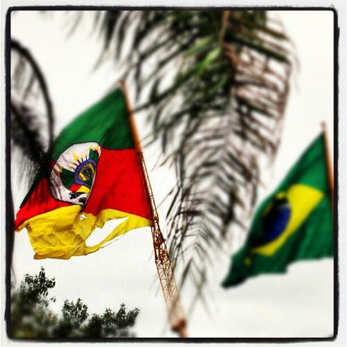Essa é a bela recepção para aqueles que chegam no Parque de Exposição Assis Brasil, em Esteio/RS, na Expointer. Uma bela bandeira do RS rasgada, em farrapos. by Marcos Nagelstein