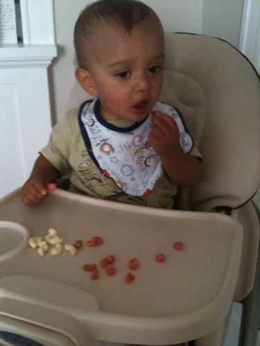 toddler eating finger foods