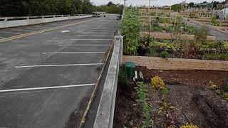20120829kc-up-garden-6