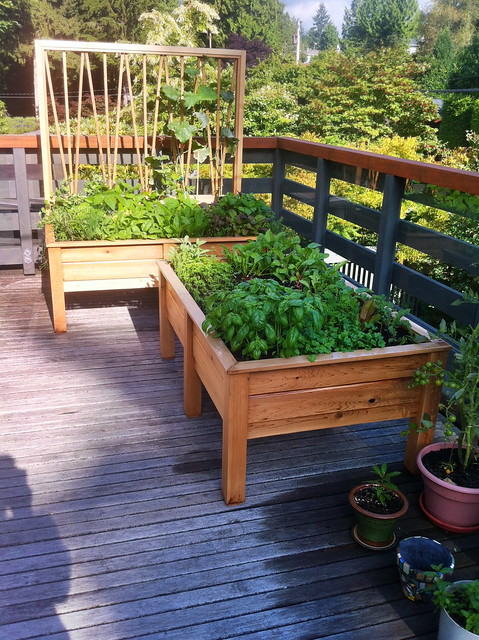 Balcony and small space gardening farmcity food garden construction - Balcony gardening in small spaces pict ...