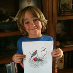 My little artist with his Frigatebird art #unitstudy #free #homeschool #hsbloggers