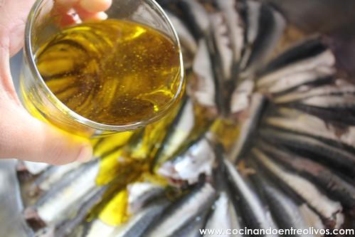 Sardinas en aceite (6)