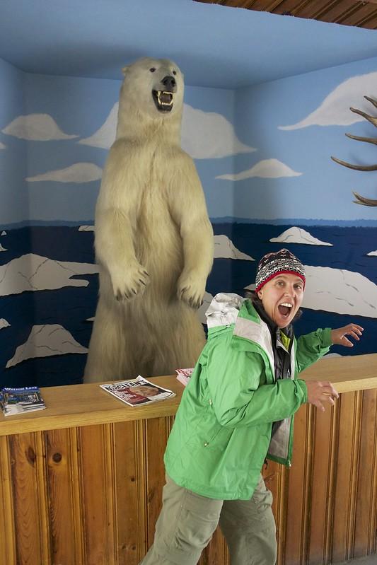 Sara polar bear encounter