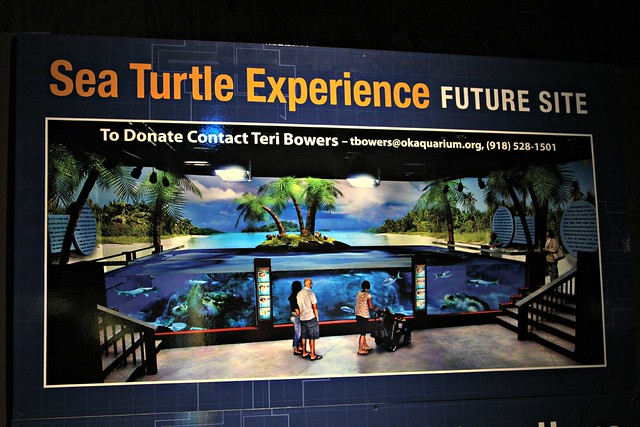 8005111965 601d88ef6a z Oklahoma Aquarium: Bringing the Ocean to the Plains