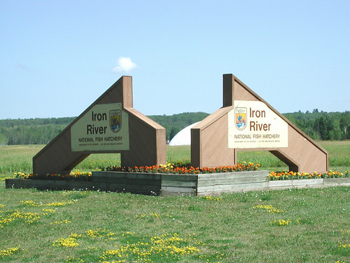 Iron River NFH, WI (edited)
