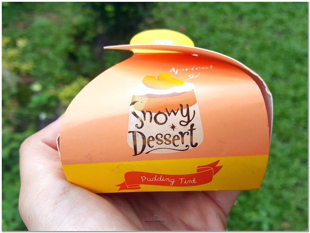 snowy-dessert-pudding-tint-apricot-1