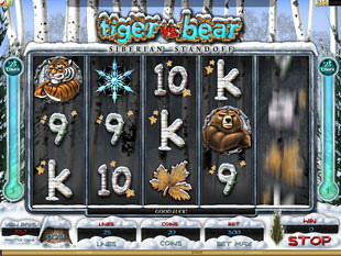 Tiger vs. Bear Slot Machine