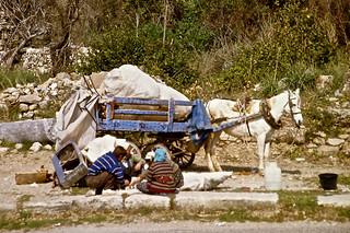 Mittagspause --- Selimiye (Side) an der türkischen Ägäisküste