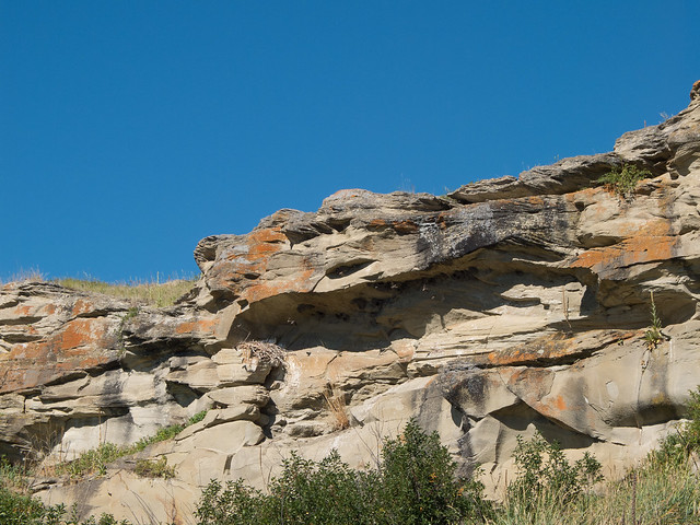 x10-head-smashed-in-buffalo-jump-and-environs-20120805-11.jpg