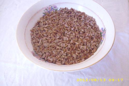 orez rosu