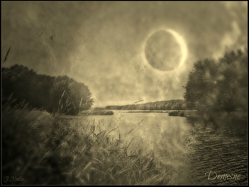 Demesne ~  the Silent Lands To The South