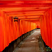 Vermillion Gates (Torii) at Fushimi Inari Shrine - Kyoto, Japan