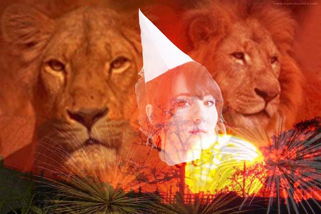 lion_06
