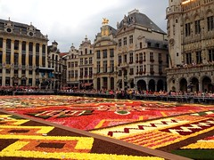 Flower Carpet on the Grand'Place (August 14-19)