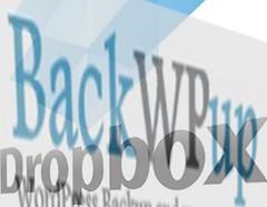 backwpup_dropbox