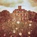 Secret Gardens / Wild Meadow by slimmer_jimmer