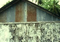 Hickey-1972-DG Plantation-950-439801-R1-71-71_129