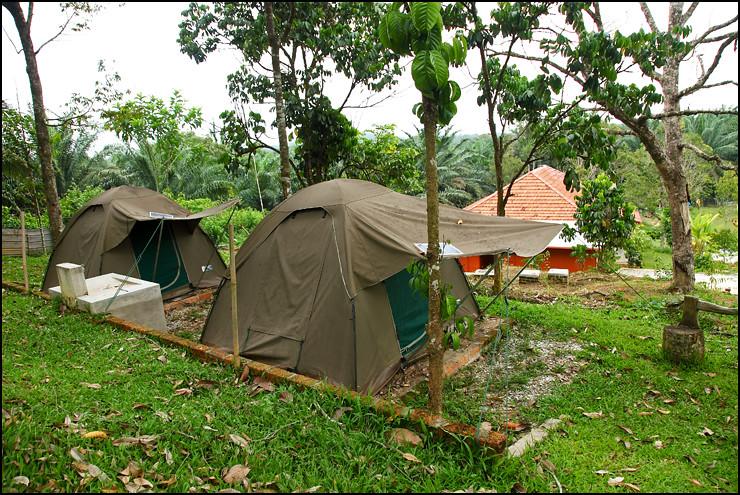normal-tent