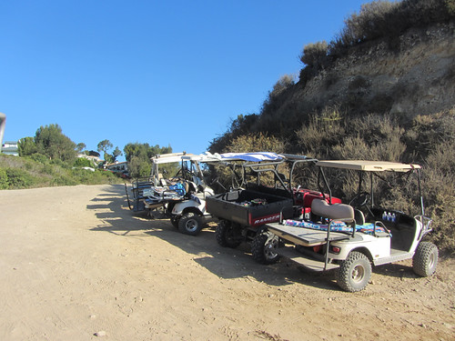 golf carts in the Cove