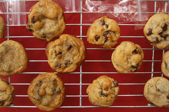 chocolate chip comparison 5