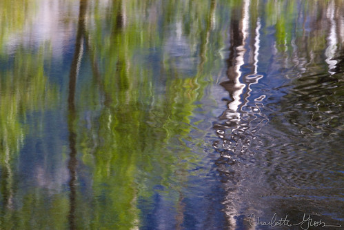 Reflections Detail, Merced River, Yosemite Valley