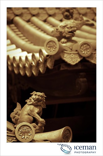 Myoshin-ji Temple 389