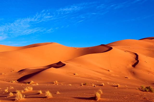 Las maravillas del desierto del Sahara 7963972876_fc4f739d9e_z