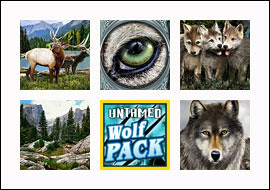 free Untamed Wolf Pack slot game symbols