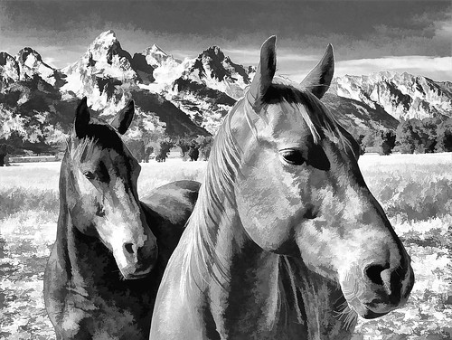 Horses at the Tetons - black and white - cartoon style