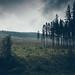 Rainy_3872 by kolderal